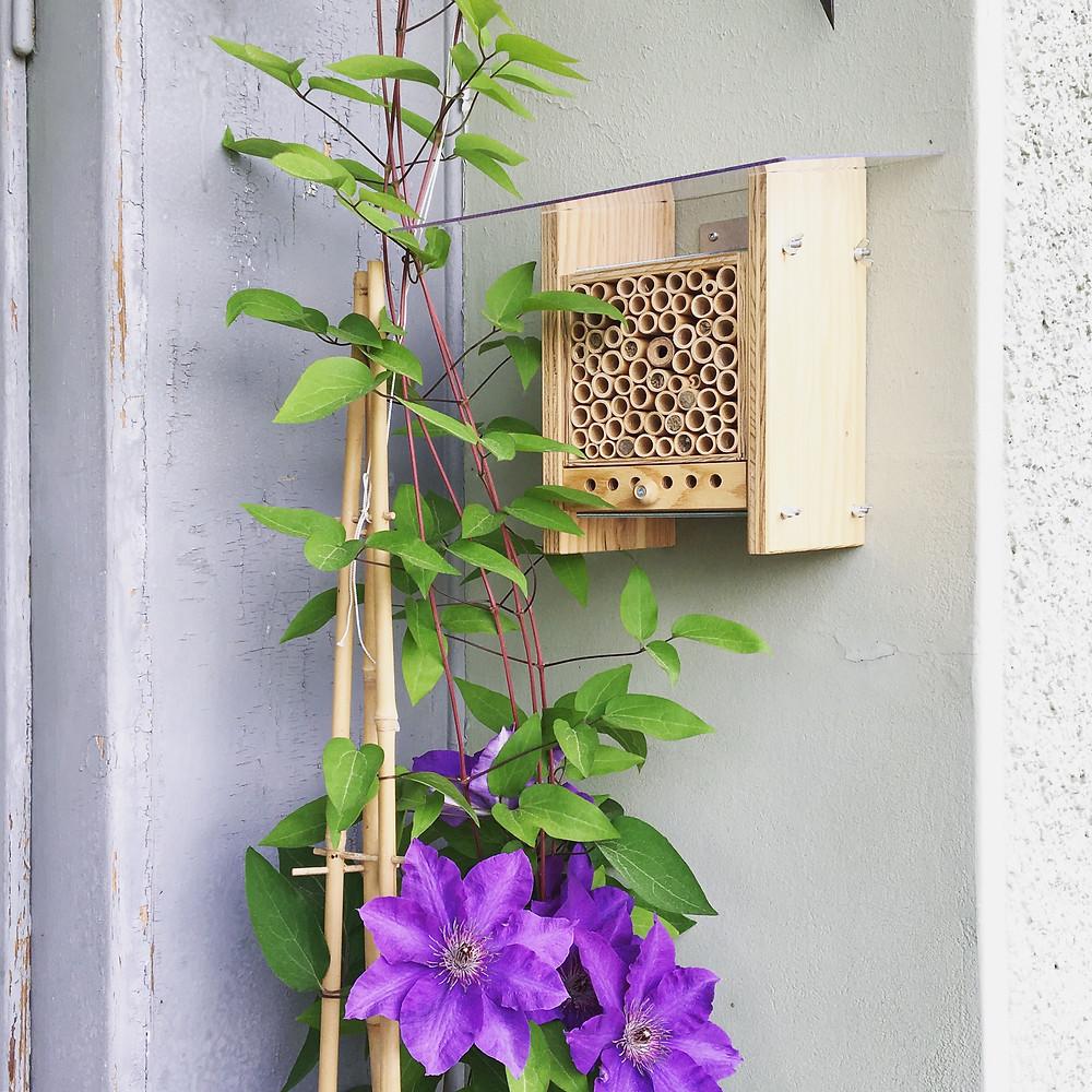 Bienenhotel, wildbienen, wildbiene und partner, bienenhaus, bienen auf dem balkon, stadtbienen, bienen in der stadt