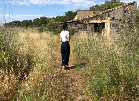 Searching for the right property for my mallorca project