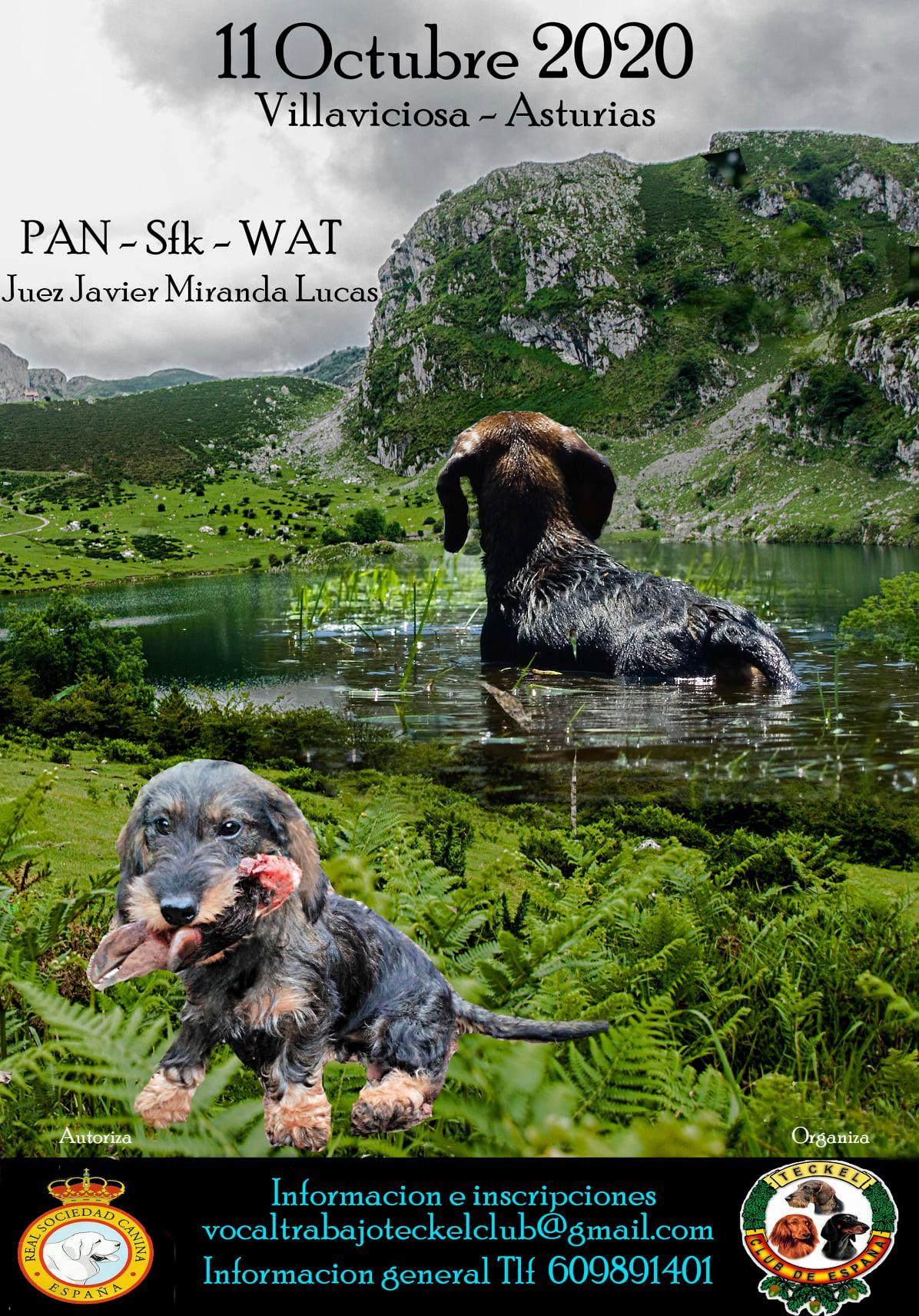 PAN ~sFK ~ WAT