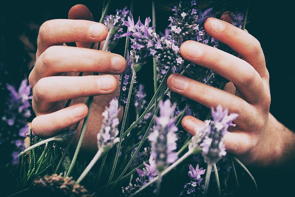 Photo from Vero Photoart - Unsplash