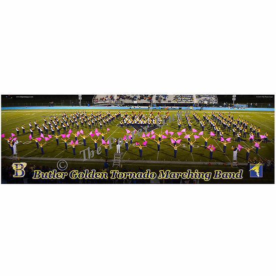 """Butler Band 2015 - poster 4 - 12""""x36"""""""