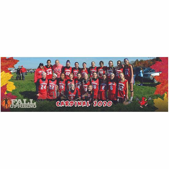 """Cardinal 2020 - 6"""" x 18"""" Poster"""