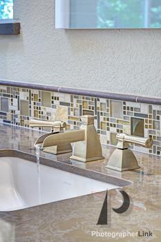 FaGalde Design Black Powder Project - Bathroom Sink