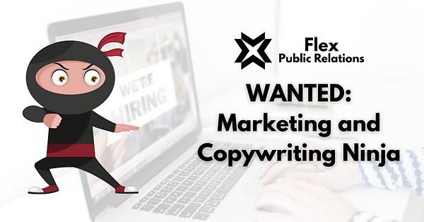 WANTED Marketing and Copywriting Ninja (2).png