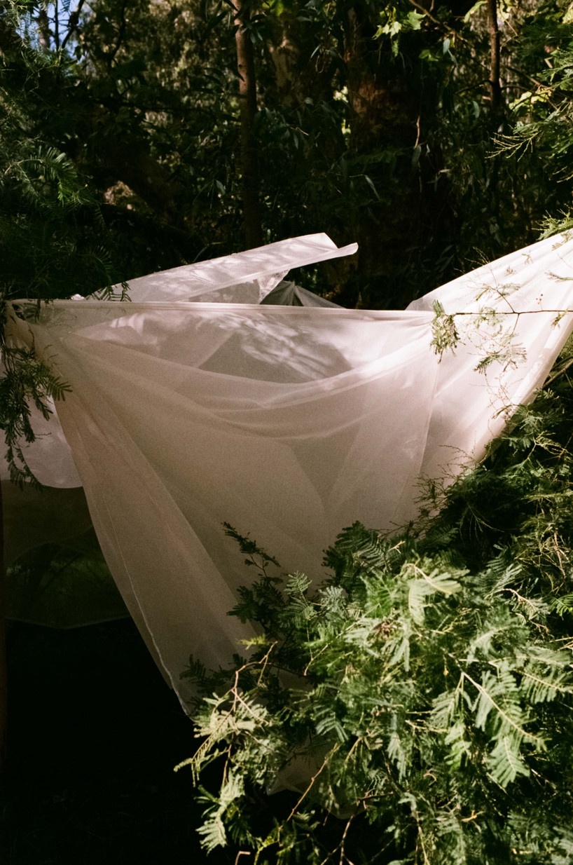 Rachel-Jayne-Mackay_Fabric-Trees_02.jpg