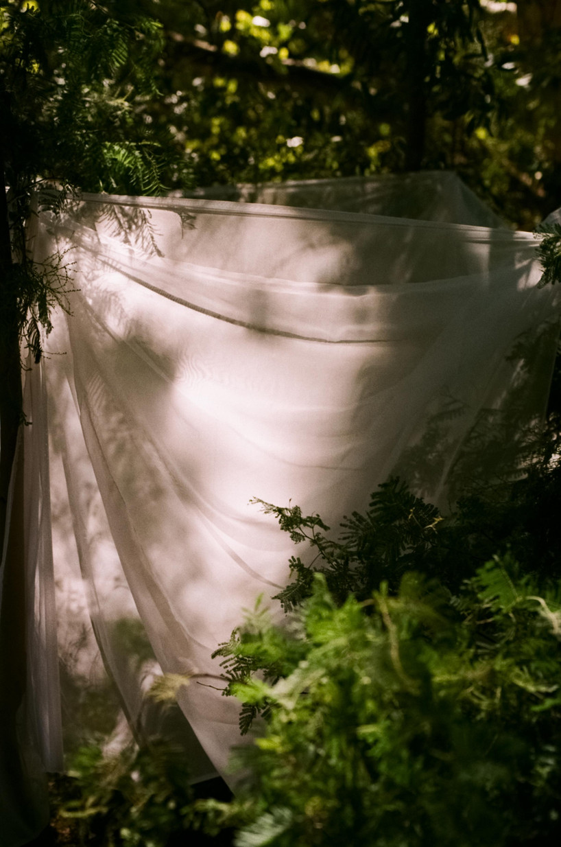 Rachel-Jayne-Mackay_Fabric-Trees_07.jpg