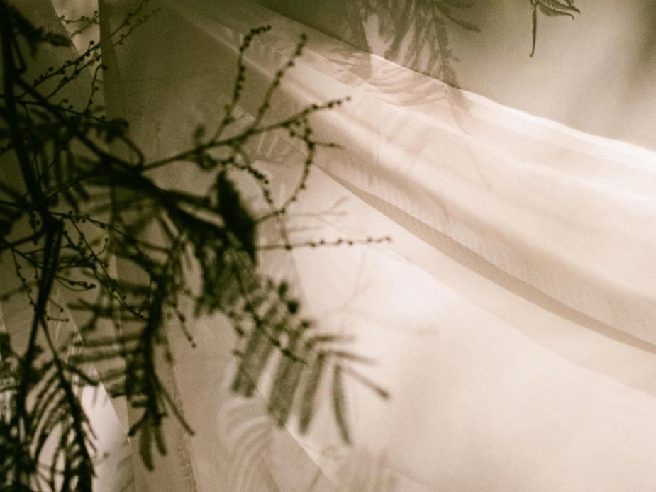 Rachel-Jayne-Mackay_Fabric-Trees_06_edit