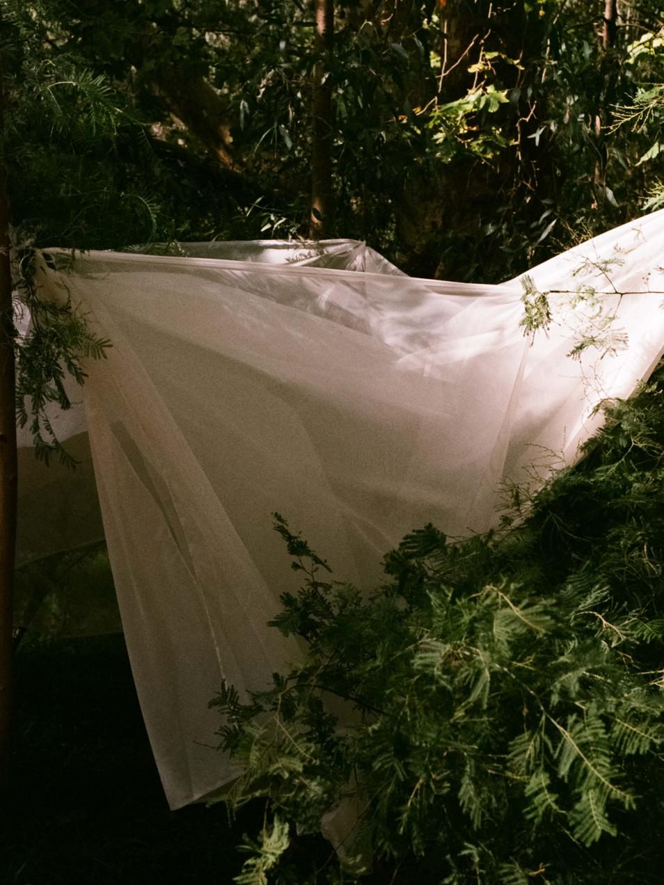 Rachel-Jayne-Mackay_Fabric-Trees_01.jpg