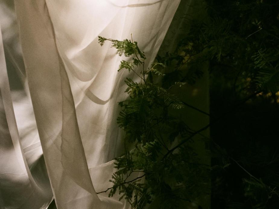 Rachel-Jayne-Mackay_Fabric-Trees_08_edit