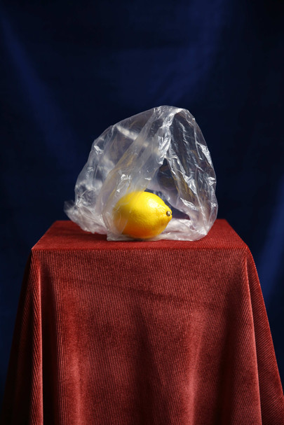 Fruit-Experiments-04_Rachel-Mackay.jpg