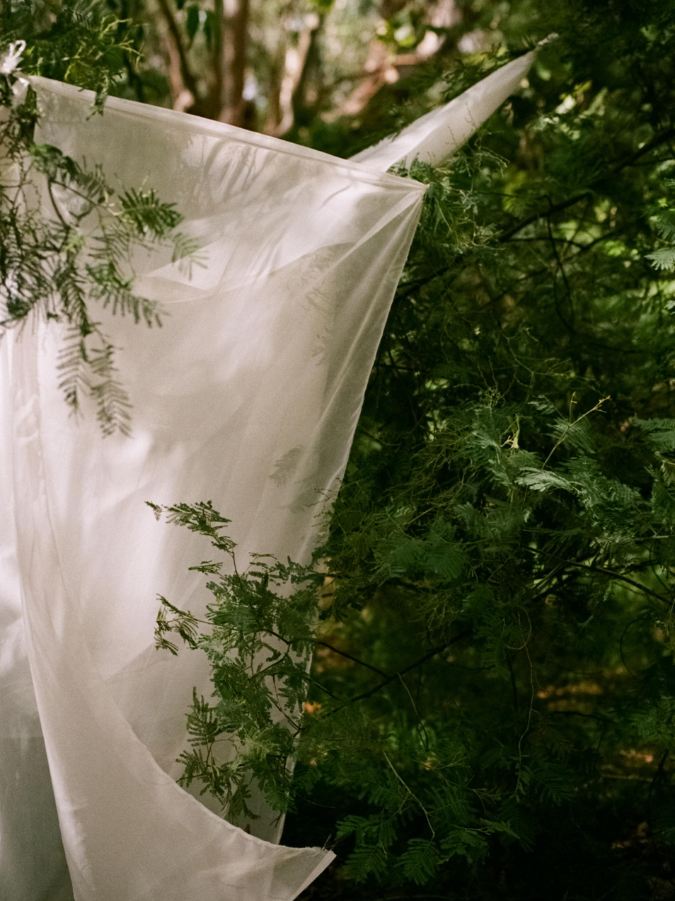 Rachel-Jayne-Mackay_Fabric-Trees_03.jpg