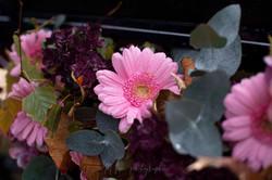 Décor fleuri cariole