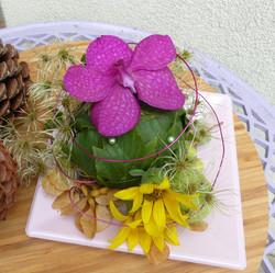 Assiette florale Saint Barthélemy