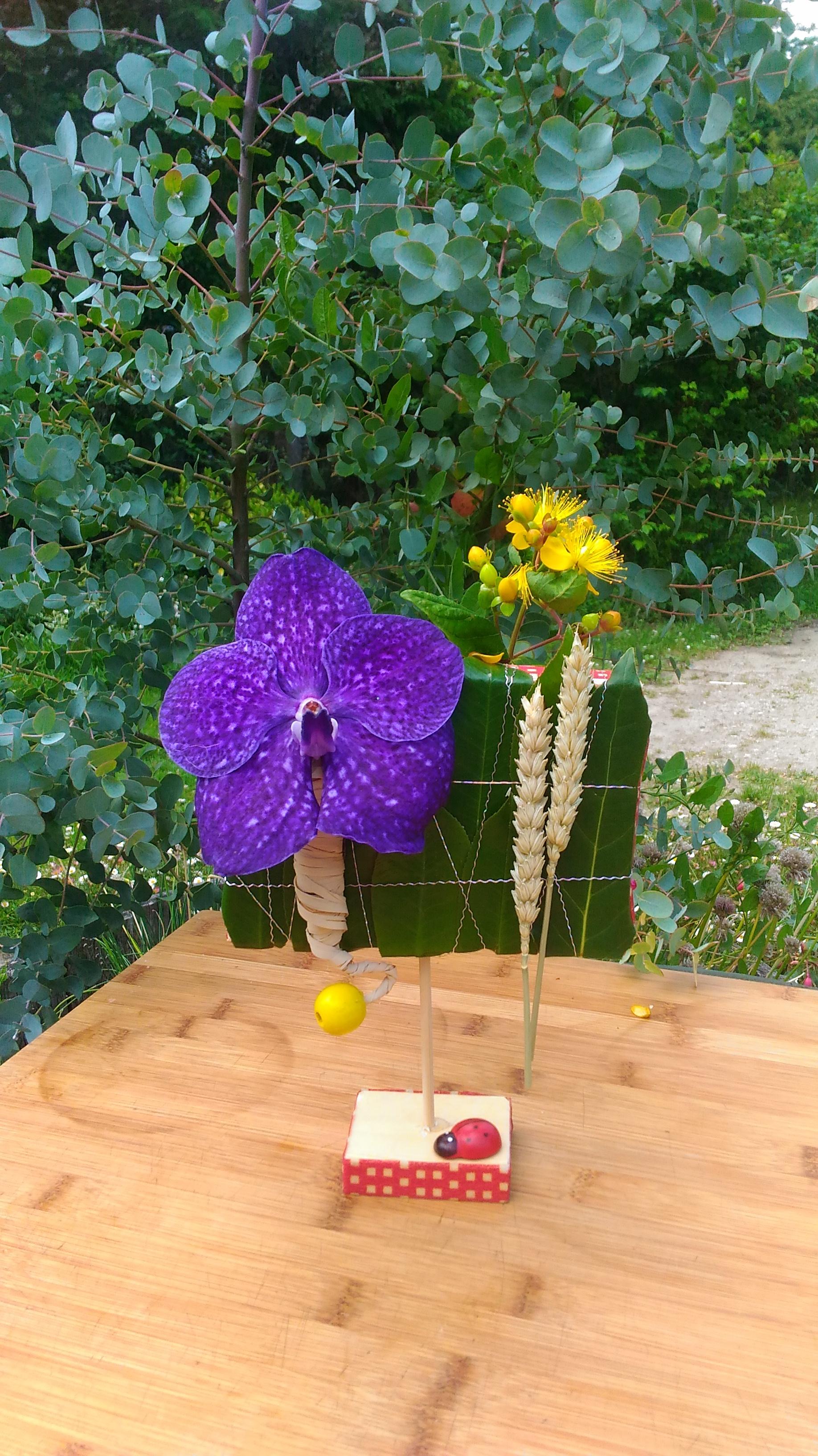 Soliflor d'orchidée