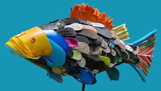 Grouper blue.jpg