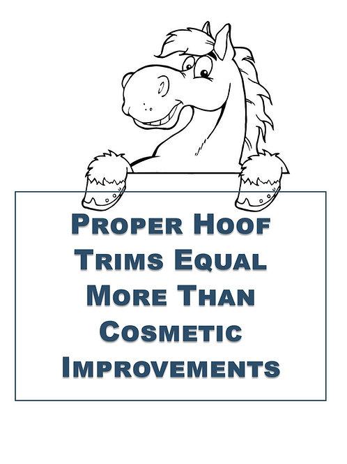 Hoof Trim Flier (50 Copies)