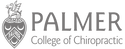 Palmer College Chiropractic Website Specialist