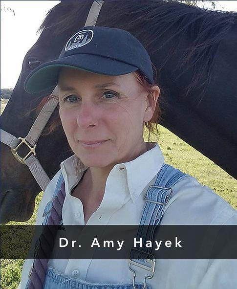 Dr. Amy Hayek.png