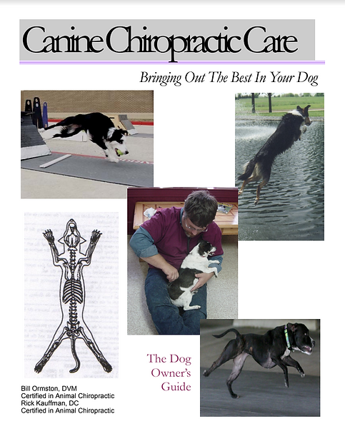 Canine Ebook cover.png