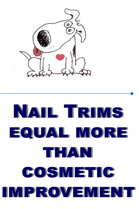 Nail Trim Flier (50 Copies)