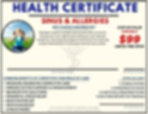 Sinus and Allergies Health Cert $99.jpg