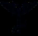 chiro-logo-transparent.png