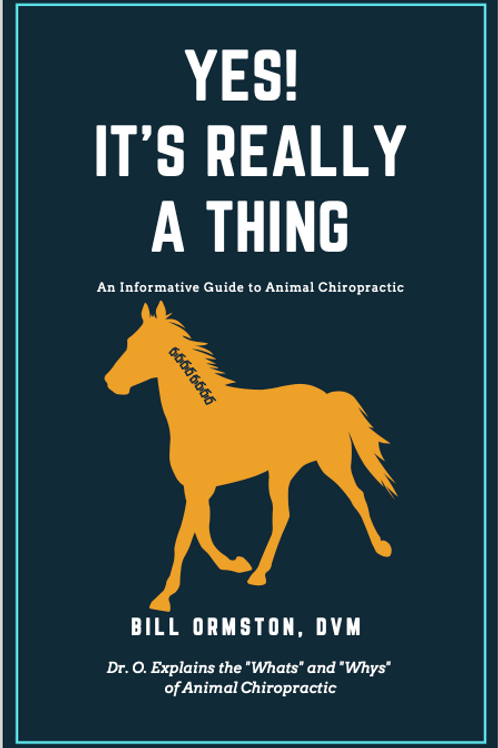 Yes! It's Really a Thing (Horse Book)