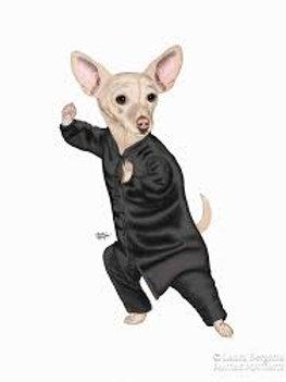 Tai-Chihuahua