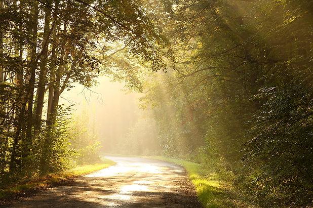 route-boisee-jomac.jpg