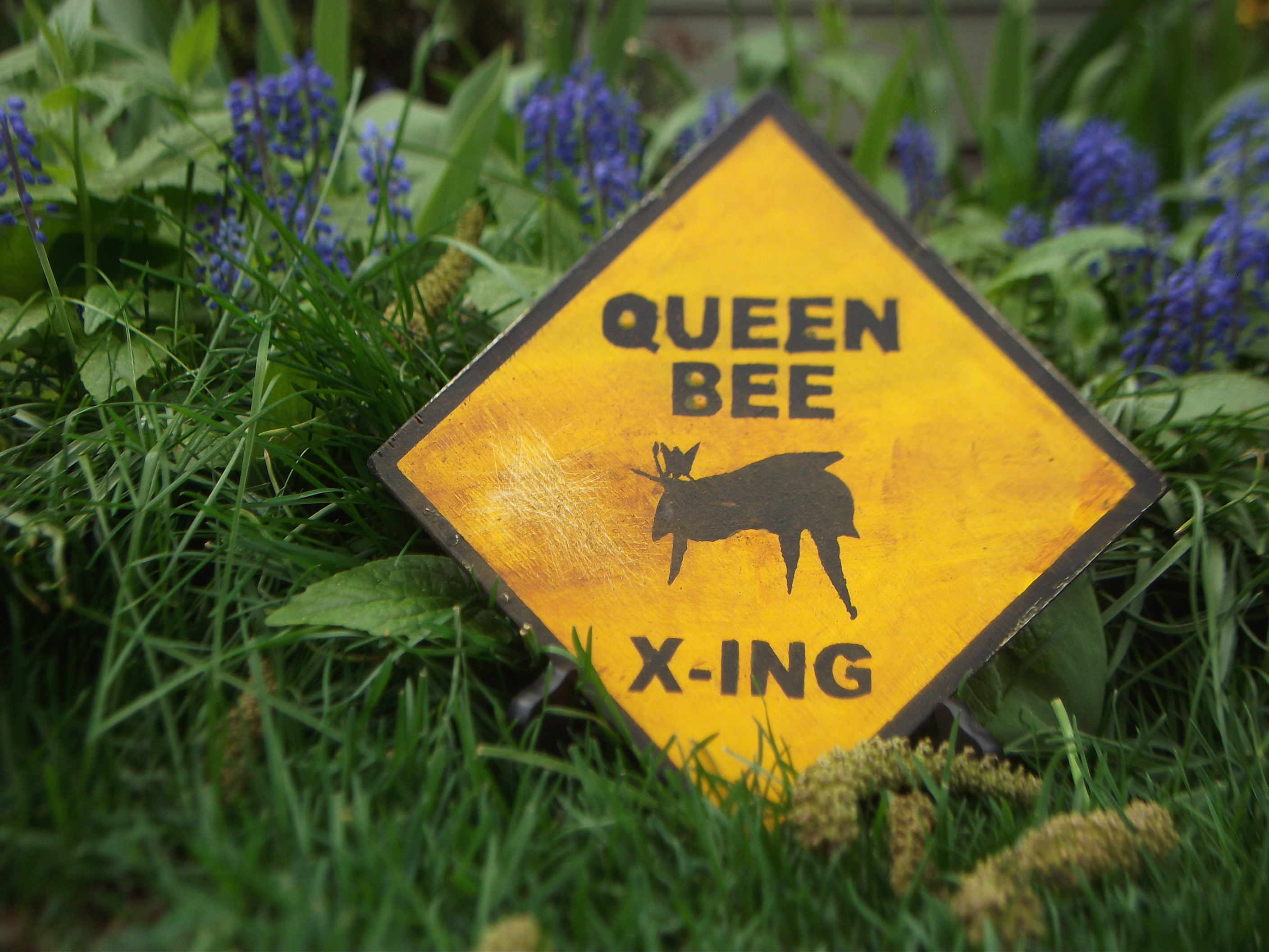 Queen Bee Sign $5