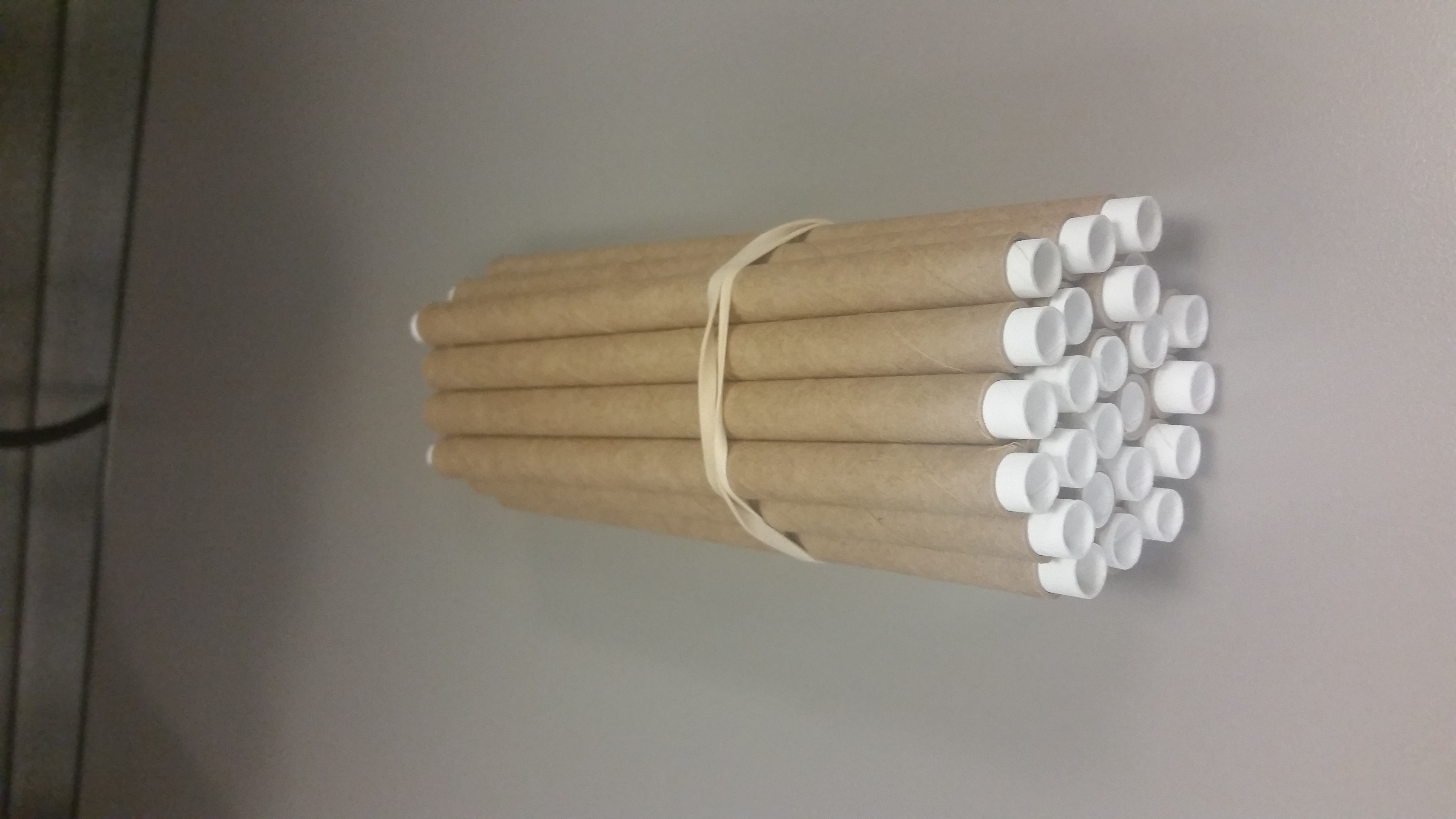 24 Guard Tubes w/Liners $6