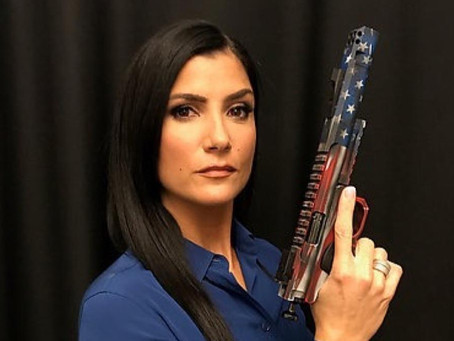 Dear NRA Spokeswoman Dana Loesch, I Have a Question I'd Like To Ask.