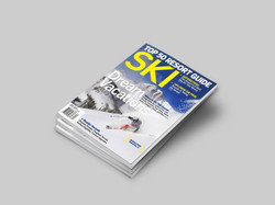 SKIMag-Stack-MOCK