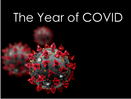 The Year of Covid