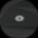 Screen Shot 2020-03-17 at 2.42.39 PM.png