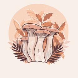 Illustration champignons