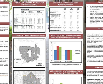 IPH conference 2014 poster Neighbourhood