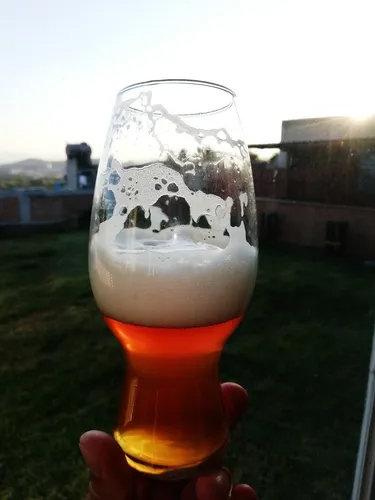 Vaso Cervecero 615 ml. / 20.8 oz.
