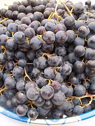 dark-grapes.jpg