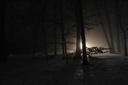 lightfrom#7_2014_3