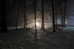 lightfrom#7_2014_1