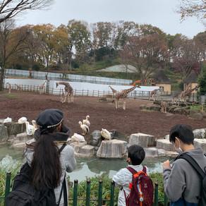 多摩丘陵 & 多摩動物公園