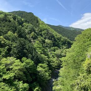 大塚山〜御嶽山ハイキング