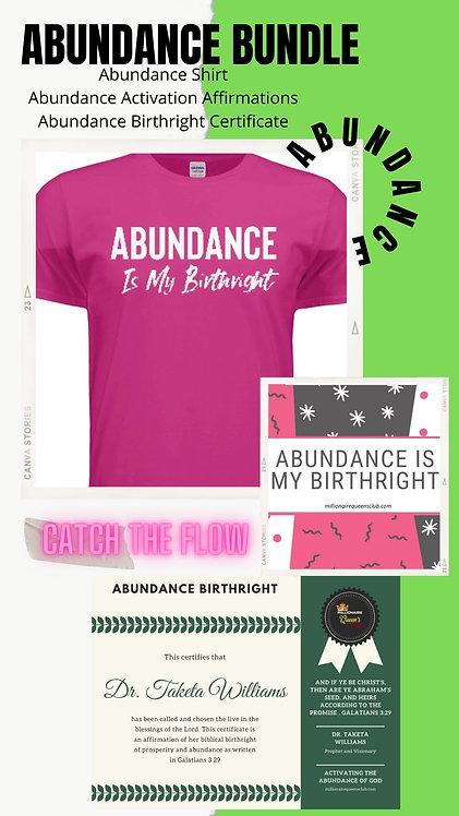 Abundance Bundle