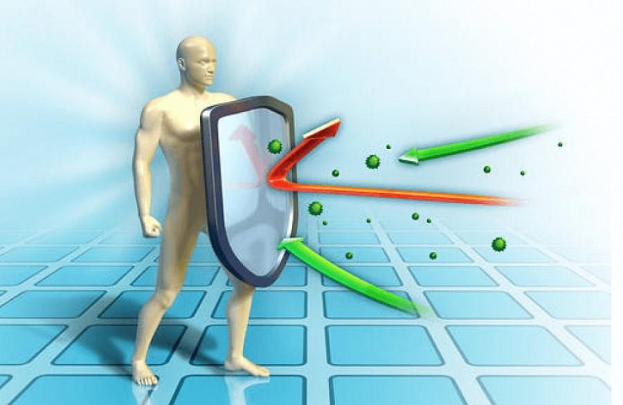 Imunitetas: Įgimtas ir įgytas imunitetas