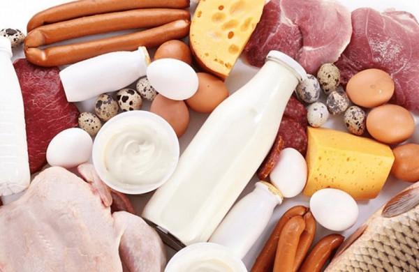 Šešios pagrindinės baltymų funkcijos organizme