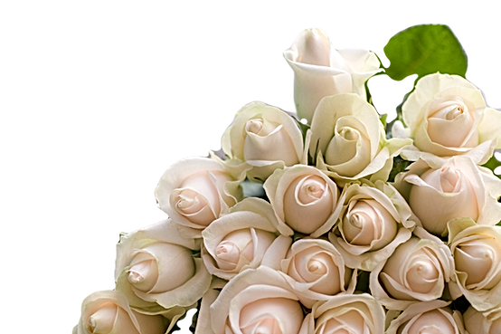 Wedding%20Bouquet_edited.png
