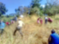 Karura Forest trip April 2019.jpg