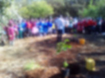 Karura 3 Forest trip April 2019.jpg