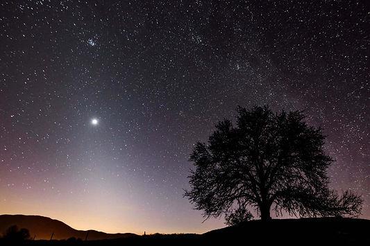 venus-night-sky.jpg
